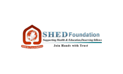 Shed Foundation
